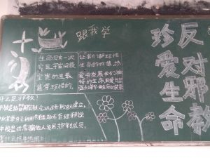 "The ""Oppose Cults and Cherish Life"" slogan on the blackboards"