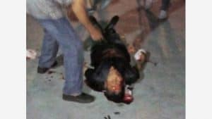 Zhang Zhongsu beaten to the ground by police