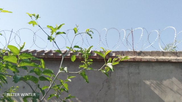 Security wire netting