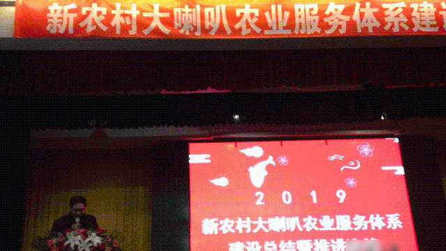 2019 Conference on Summary and Promotion of Hebei Provincial