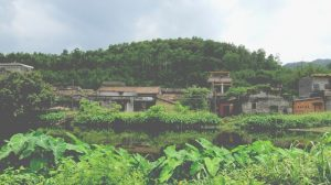 chinese rural village