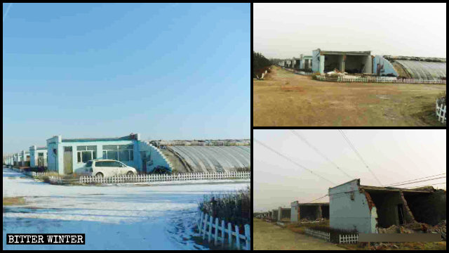 Plan nurseries in Jinhe town of Saihan district in Hohhot city before and after demolition.