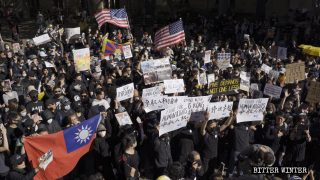 Oppressed Religious Groups Joined Anti-Totalitarianism Rallies
