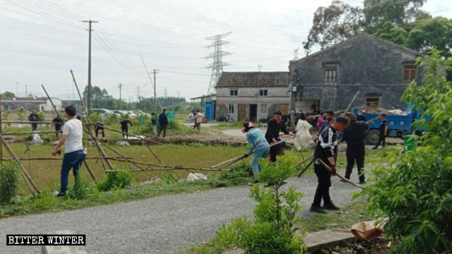 Government-hired personnel are tearing down trellises in Pingyang county.