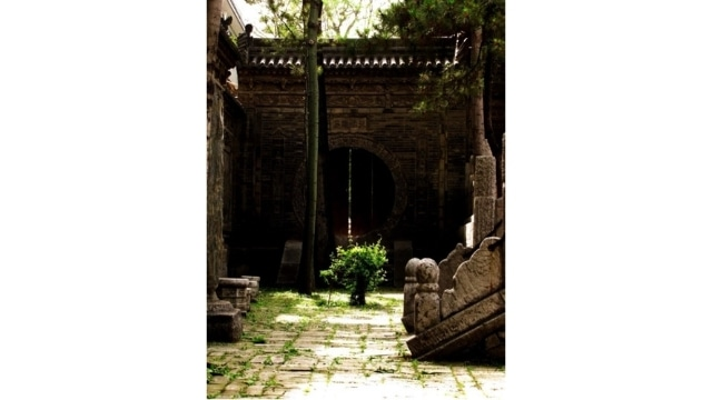 Tra le lastre di pietra bagnate dalla luce del sole in un angolo tranquillo della Grande Moschea di Xi'an, tra le fessure cresce un cespuglio solitario, circondato da piantine.